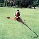 Xie Qiuping - La donna con i capelli più lunghi del mondo